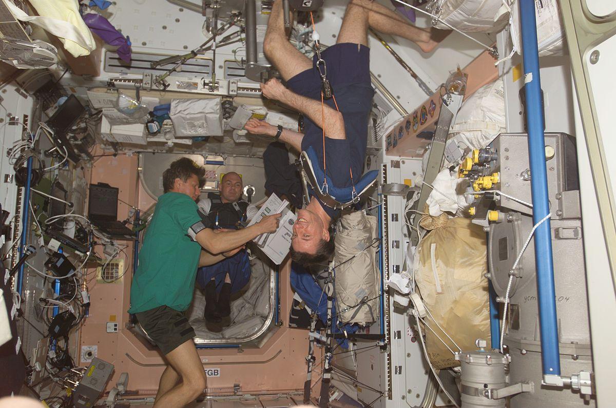 vektløse astronauter